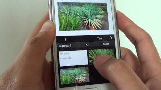 Samsung Galaxy S5: How to Open a Clipboard to View Copied Text and Picture