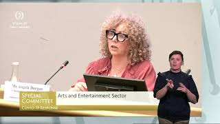 Oireachtas Committee Meeting - Arts and Entertainment Sector 30/6/20