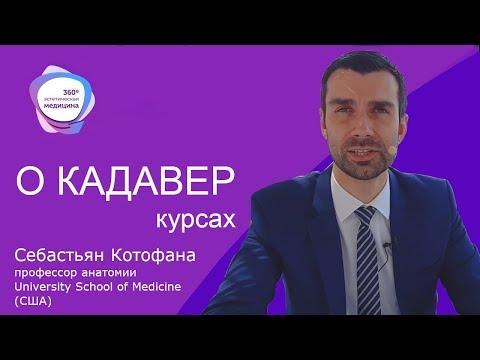 Себастьян Котофана об анатомии