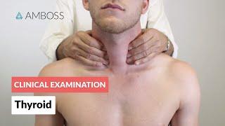 Examination of the Thyroid - Clinical Examination