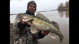 Рыбалка на оби весной с берега