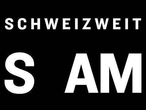 Was ist schweizer Architektur?