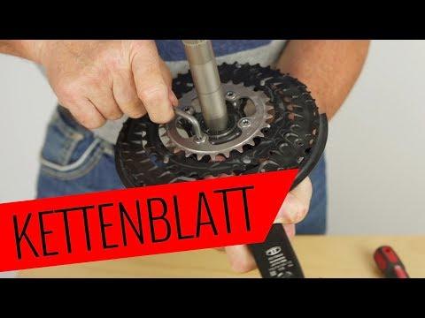 Fahrrad Kettenblatt tauschen - einfach & schnell - Fahrrad.org