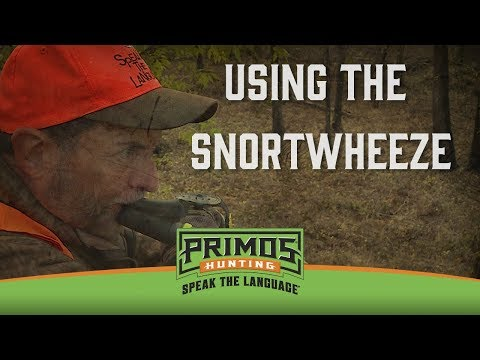 Using the Snort-Wheeze video thumbnail