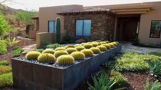 Home Cactus Garden Design Ideas - Nadin Decor