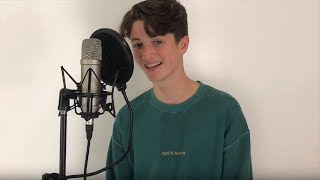 Taylor Swift   You Need To Calm Down (Cover By Henry Moodie)