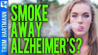 Are Scientists Giving Rats CBD To Cure Alzheimer's?