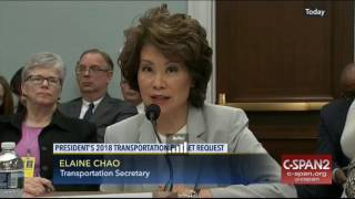Elaine Chao discusses selling U.S. assets