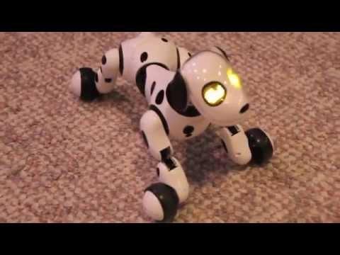 Mascotas Tecnológicas: Perro Zoomer