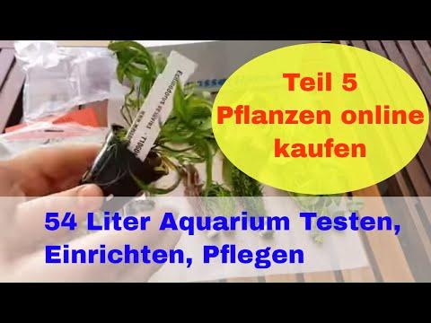 Wasserpflanzen online kaufen. 54 Liter Aquarium  Marina Basic. Testen, Einrichten, Pflegen Teil 5