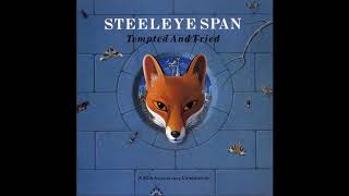 Steeleye Span-Following Me
