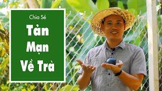 Tản Mạn Về Trà Xanh Thái Nguyên