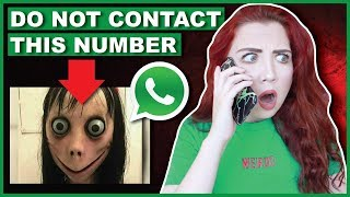 DO NOT Contact Momo | Scary Phone Number