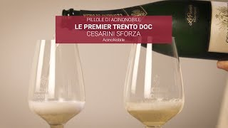 Trento DOC - Cesarini Sforza - Chardonnay