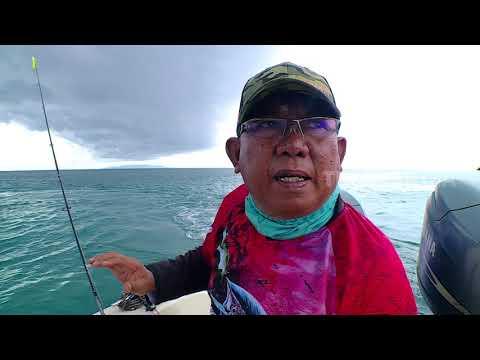 MANCING MANIA | ULTRALIGHT FISHING TOMINI  (07/01/18)  1-3