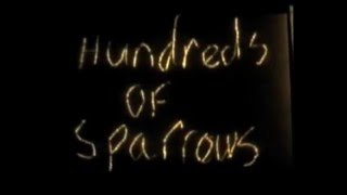 Hundreds Of Sparrows (Official Video Remix)