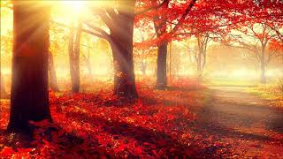Beautiful Instrumental Hymns about the Love of God and the Love of Jesus | Relaxing, Peaceful