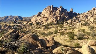 Ross Windsor - Arizona Trip