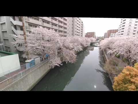Xiro Xplorer Mini Image Stabilizer Test. Japan Yokohama