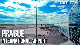 Prague Airport Transport, Prague
