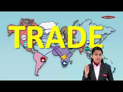 Skalpavimo prekybos sistemos