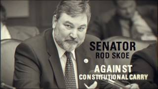 Senator Rod Skoe Supports Bloomberg's Agenda for Minnesota!