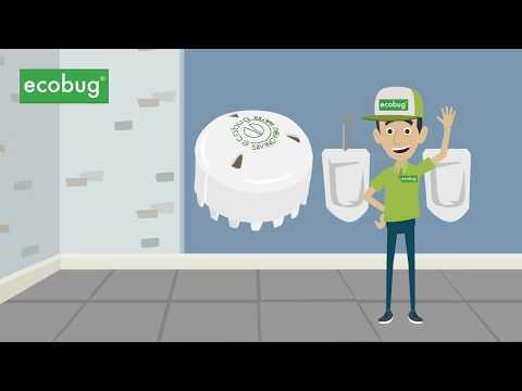 Ecobug Urinal-System Erklärvideo