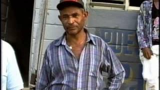 preview picture of video 'la canela abajo,republica dominicana,05/93,parte2,21.1'