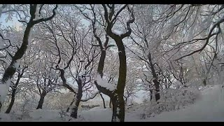 Fpv Snow flight with 4inch lightweight drone, Thornbury Calverly, magical day looked like Narnia.
