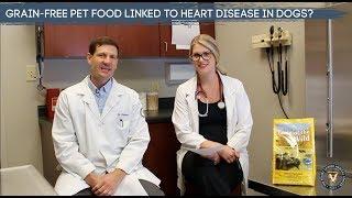 Grain Free Dog Food Linked To Heart Disease?