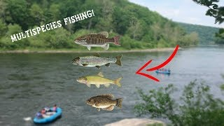 Fishing the Delaware River for GIANT fish!!