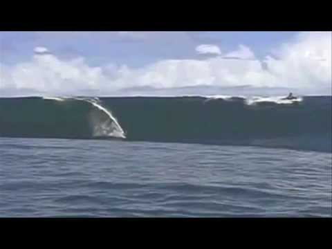The Surf Dawgs - Bullet Wave - Ventures, Big Waves, Wipeouts, Bikini Babes