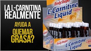 L-Carnitina | Realmente sirve para quemar grasa ?