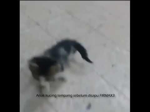 Pagkasira ng kuko halamang-singaw