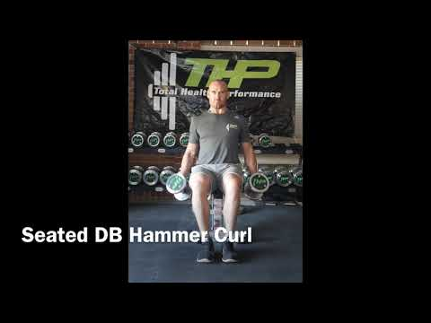 Seated DB Hammer Curl
