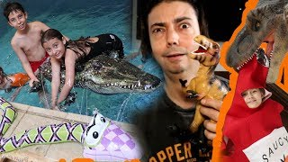 تمساح للمسبح وكاتشب للديناصور!