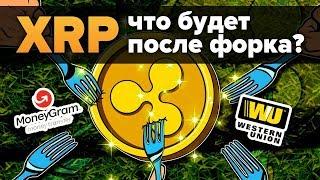 XRP Форк, Брэд Гарлингхаус о FUD вокруг Ripple, Western Union и Moneygram что выгоднее?