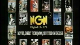 NGN and NGN 3 station IDs