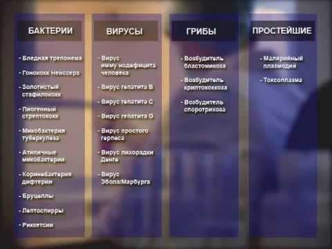 Заболеваемость гепатитами в россии