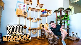 BUILDING MY KITTY HIS DREAM HOUSE!! (INSANE)