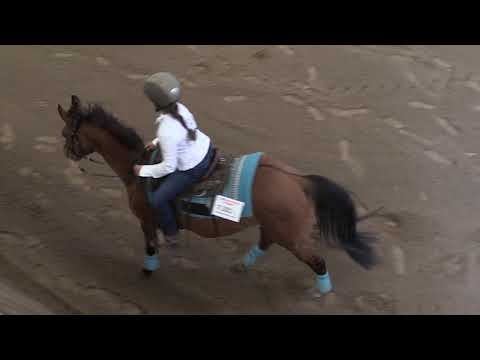 Campeonato Navarro de Reining 040519 Video 2