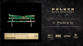 """Paluch """"Prosto W Ryj"""" Prod. The Returners"""