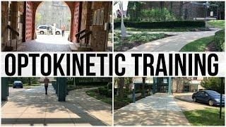 Outdoor Art Exhibit: Optokinetic Training (3:38)