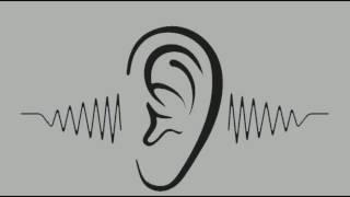 MUSIC #2#No Copyright Sounds,бесплатная музыка для видео youtube