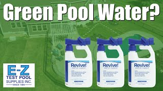 How to Fix Green Water in Your Swimming Pool