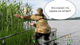 Сигнализатор маятниковый для донной ловли