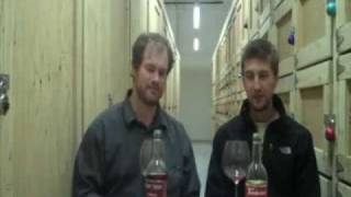 Wine Is Serious Business 9: The Bottom of the Bottom Shelf - Thunderbird and Night Train -part 2