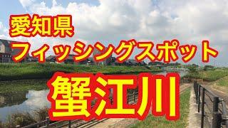 蟹江川愛知県フィッシングスポット