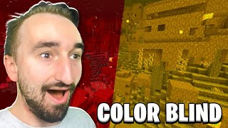 Minecraft But I'm NOT Colorblind
