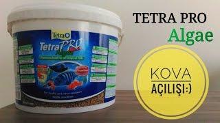 Tetra Pro Algae (Bitkisel Protein)